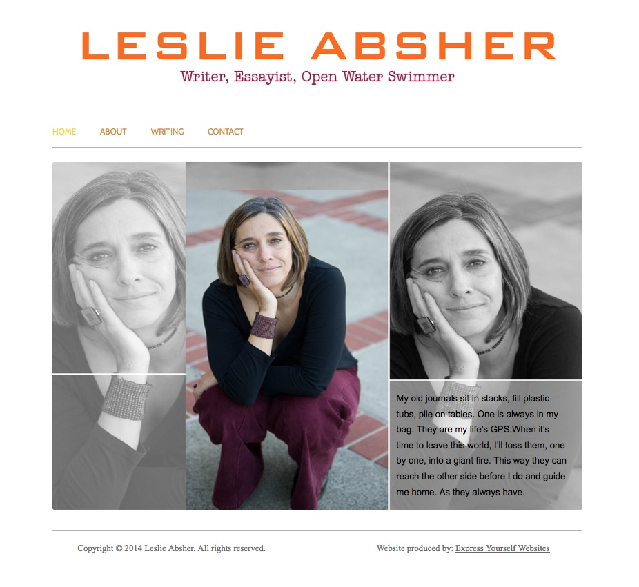 Leslie Absher Screenshot for portfolio